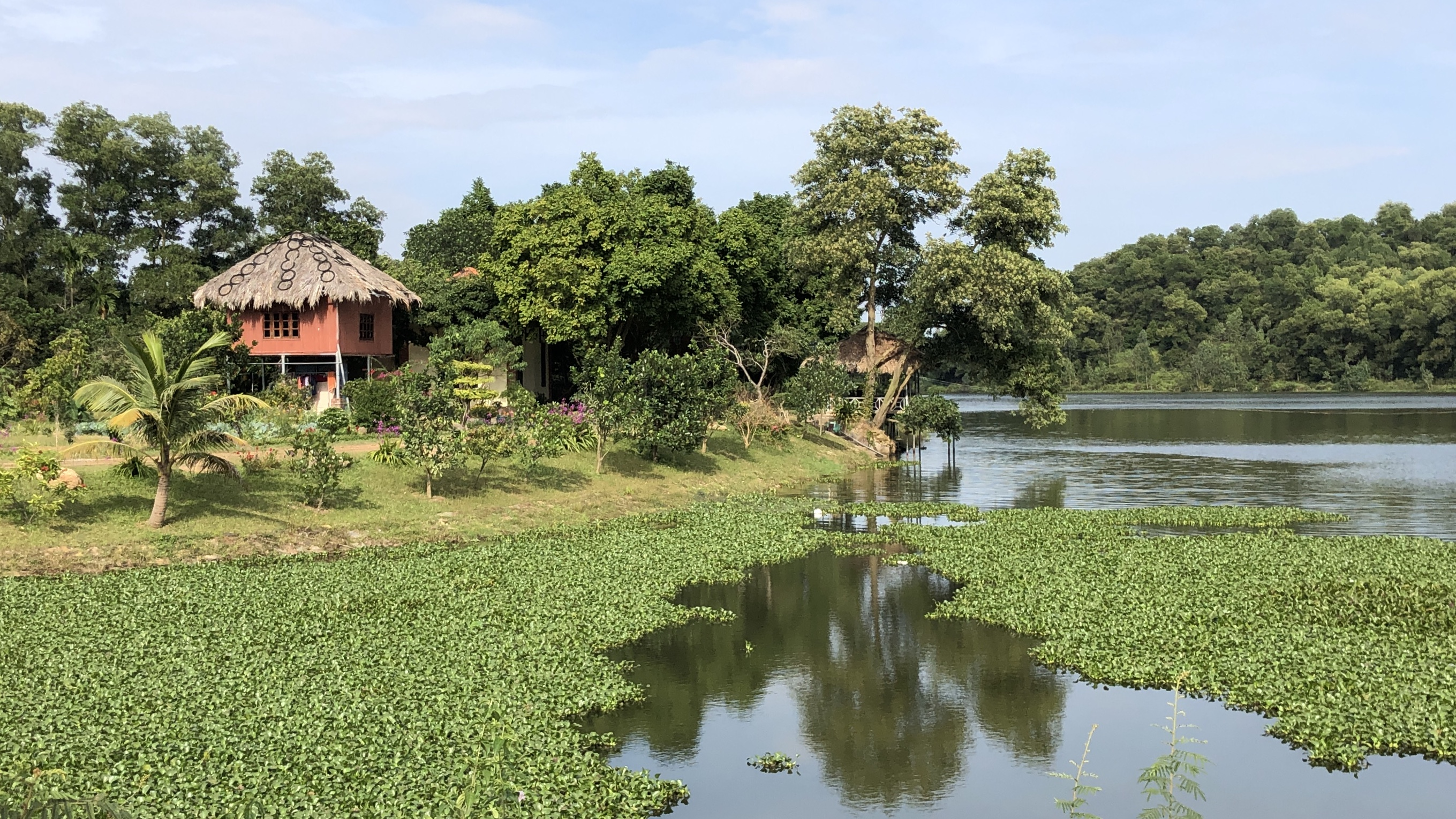 a peaceful pond in soc son district hanoi vietnam IMG_9450.jpg